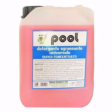Pool-detergente-universale-lt5_Angelella